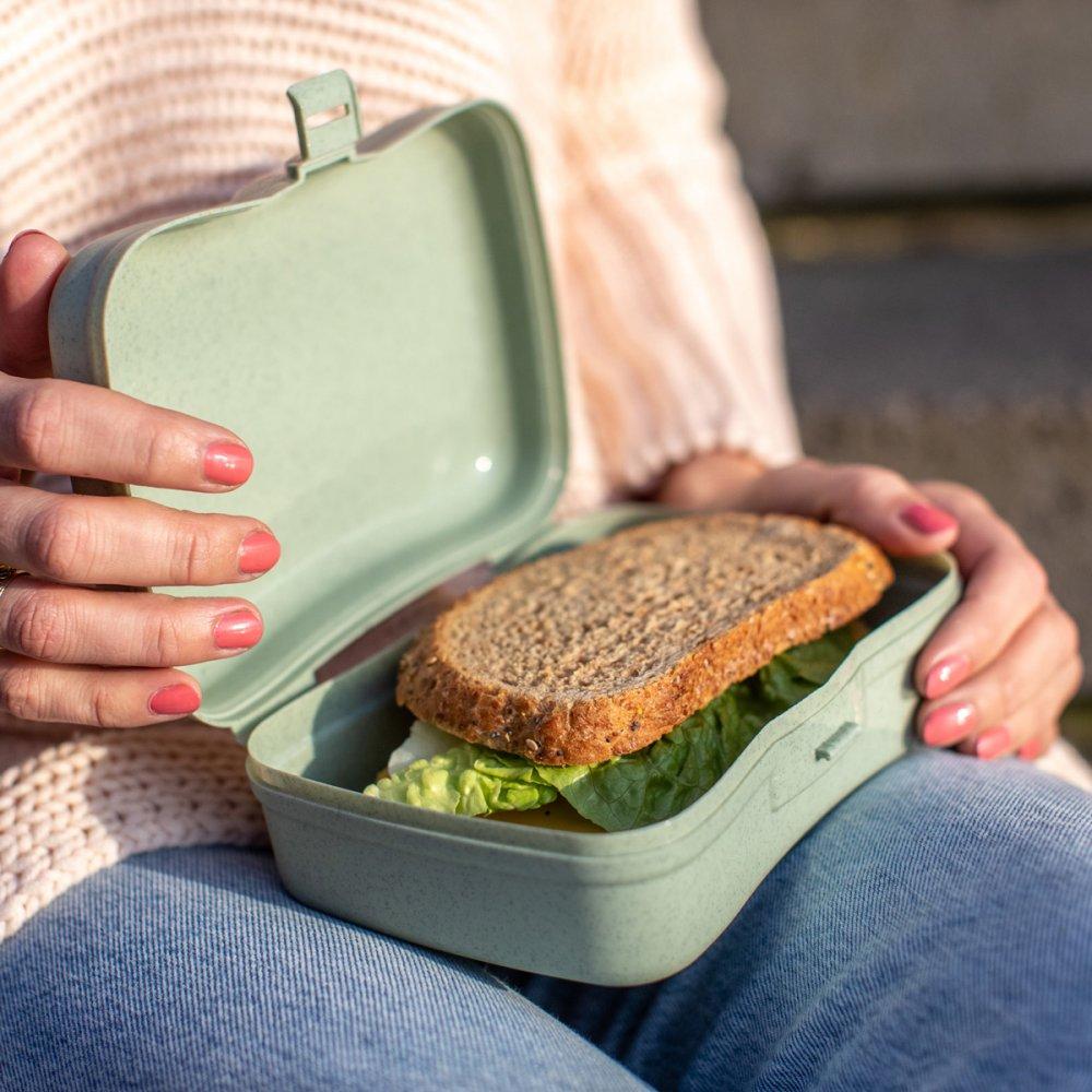 BASIC Lunchbox