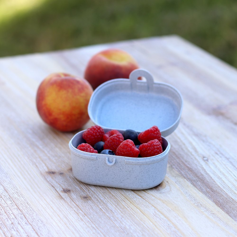 PASCAL MINI ORGANIC Lunchbox