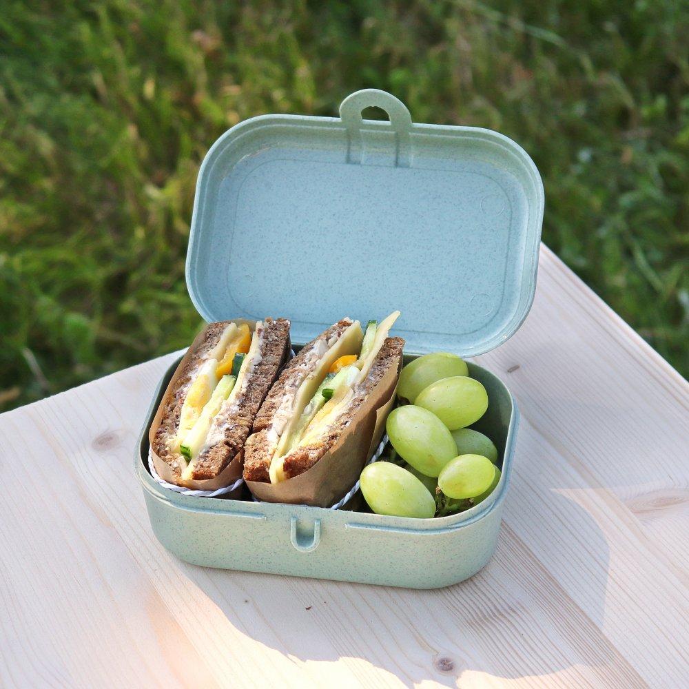 PASCAL S ORGANIC Lunch Box