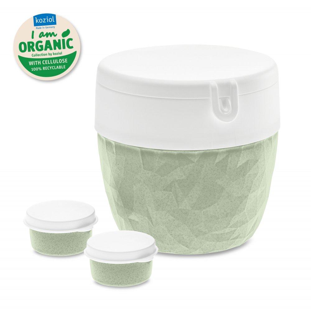 BENTOBOX L ORGANIC Bento Box organic green
