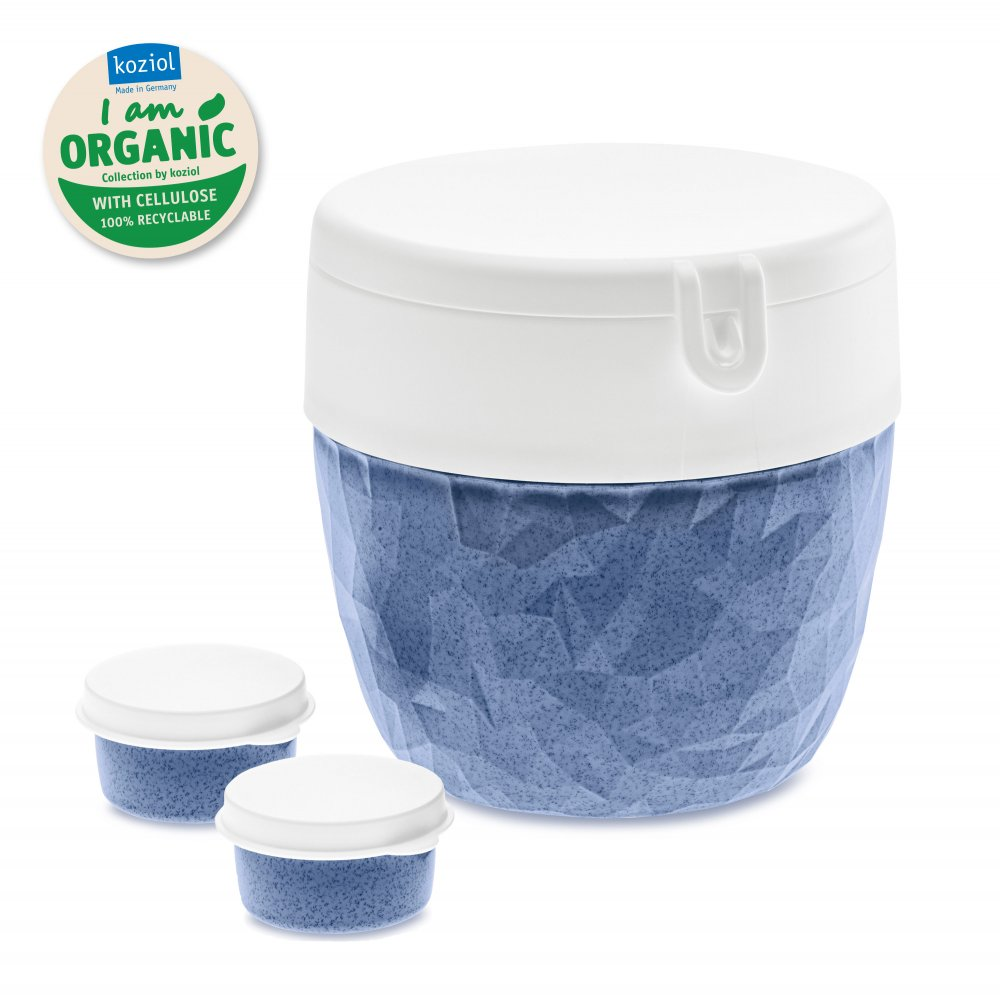 CLUB Bentobox organic blue