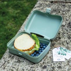 BASIC ORGANIC Lunchbox