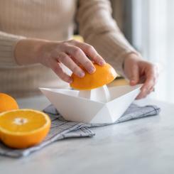 AHOI XL Orangenpresse