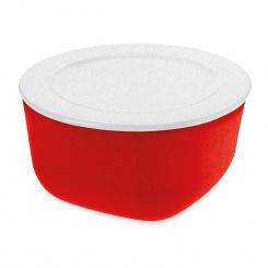 CONNECT FRESH L ORGANIC Box with lid 2l